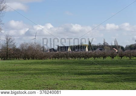 Sint Gillis Waas, Belgium, 03 March 2020, Windmill Park On The Edge Of A Residential Area