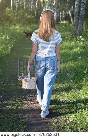 Beautiful Middle Age Woman Walking In The Forest With Flower Basket And A Dog. Summer Evening Walkin