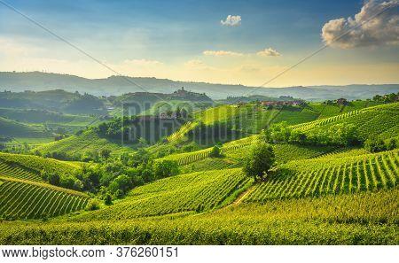 Langhe Vineyards Sunset Panorama, Castiglione Falletto And La Morra, Unesco Site, Piedmont, Northern