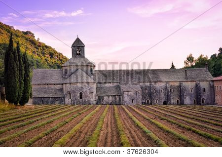 Abbaye De Senanque In Provence Before Sunset