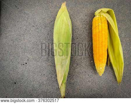 One Tasty Cooked And One Non Cooked Corn Isolated On Grey Background. Daylight