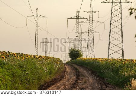 Rural Rural Road Between Sunflower Fields Against The Background Of Metal Pylons Of Electric Wires