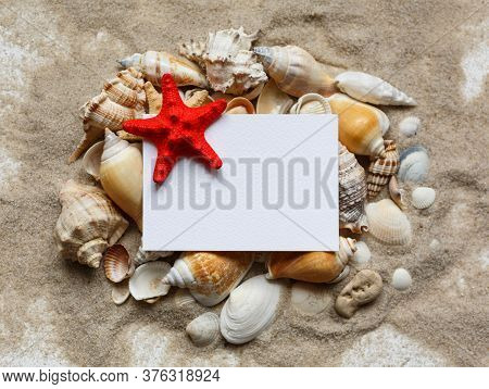Many Shells And Red Starfish Are Lying On The Sand. Blank White Blank With Place For Text. Top View.