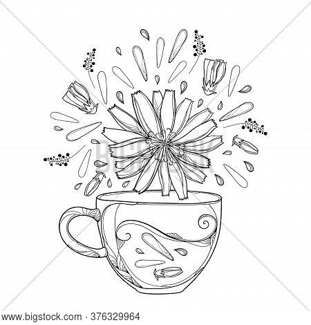 Vector Contour Cup Of Chicory Herbal Tea With Petals, Flower And Bud In Black Isolated On White Back