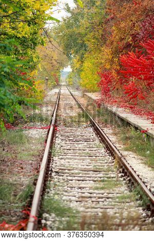 Railway Track With Beautiful Natural Environment And Phenomenal Autumn Colorful Leaves On Trees In B