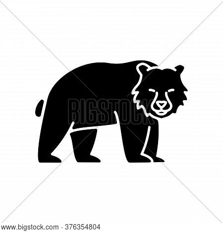 Brown Bear Black Glyph Icon