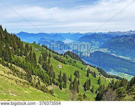 Alpine Pastures And Grasslands On The Slopes Of The Pilatus Massif And In The Alpine Valleys At The