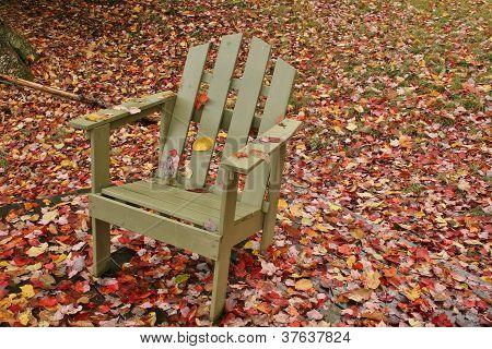Adirondack chair amid leaves