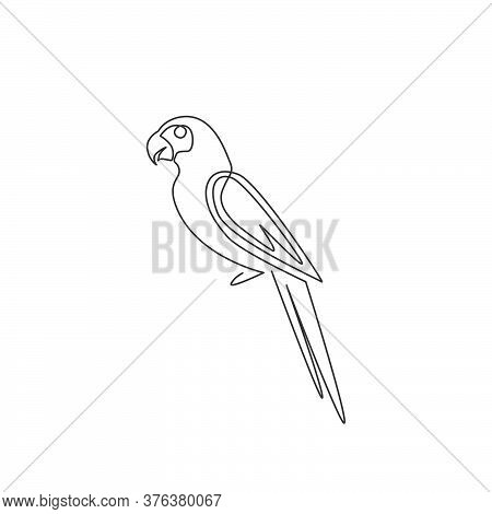One Continuous Line Drawing Of Cute Parrot Bird With Long Tail For Logo Identity. Aves Animal Mascot