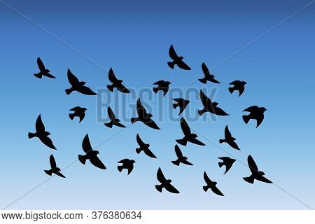 Vector Silhouette Of A Flock Of Birds. Illustration Of A Flight Of Pigeons In The Sky. Pattern Of Bl