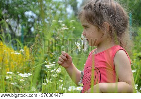 Outdoor Portrait Cute Smiling Baby Girl In Camomile Field .adorable Girl With Blue Eyes And Flowers