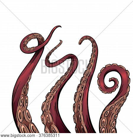 Set Of Color Cartoon Sketches Of Octopus Tentacles. Creepy Limbs Of Marine Inhabitants. Vector Objec