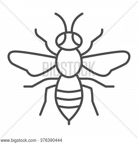 Wasp Thin Line Icon, Insects Concept, Bee Sign On White Background, Wasp Insect Icon In Outline Styl