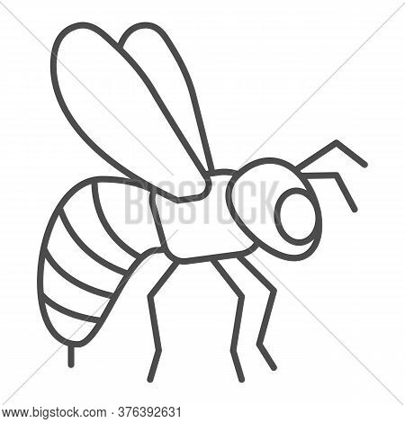 Bee Thin Line Icon, Insects Concept, Honeybee Sign On White Background, Flying Bee Insect Icon In Ou