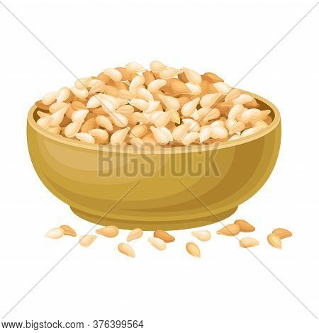 Dry Seeds Of Cereals Or Grain Crops Poured In Bowl Vector Illustration