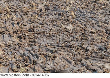 Wet Clod Clay Soil At The Construction Site Ready To Develop For Real Estate Project. Soil In The Ri