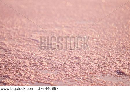 Background Texture Sea Pink Salt. Salt Crystals Close Up. Pink Salt Lake.