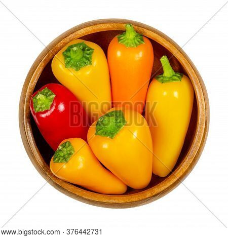 Colorful Bell Peppers In Wooden Bowl. Also Sweet Pepper Or Capsicum. Fresh Yellow, Orange And Red Fr