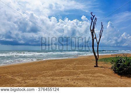 Beach In Sri Lanka. Yellow Sand, Aquamarine Ocean, Waves With Foam, Azure Sky, Picturesque Clouds. T