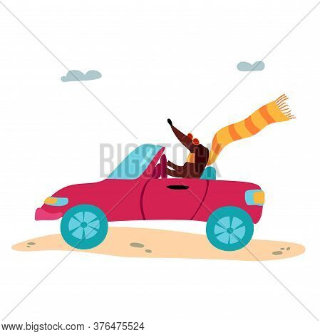 A Vector Illustration Of A Cute Dachshund Wiener Dog In A Cabriolet. Summertime And Vacation Mood.