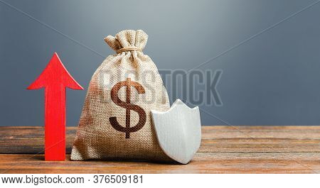 Dollar Money Bag With A Shield And A Red Arrow Up. Increasing The Maximum Amount Of Guaranteed Insur