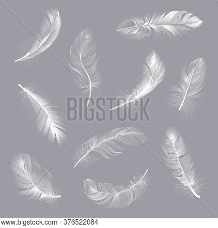 Realistic Feathers. Fluffy White Twirled Feathers, Bird Wing Falling Weightless Feather, Flying Lung