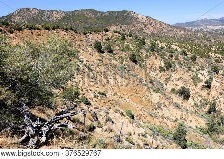 Chaparral Plants On A High Desert Plateau With Arid Hills And Bluffs Taken At Rugged Badlands In The