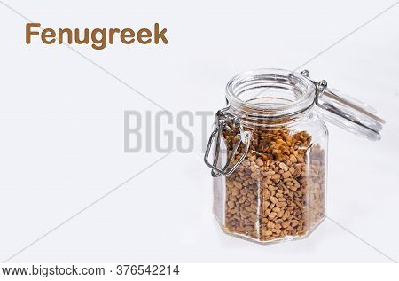 Organic Fenugreek Seeds In The Glass Jar. Trigonella Foenum-graecum