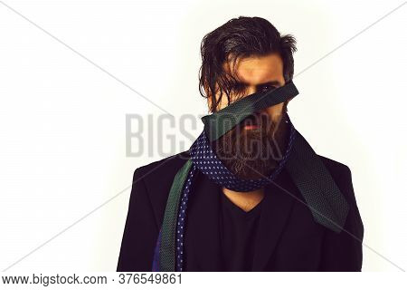 Brutal Caucasian Hipster In Black Suit With Ties Around Head