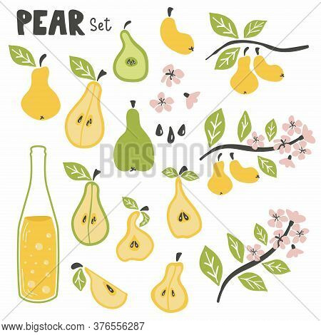 Pear Set. Pear Whole Chopped Half Quarter Cut Slices Pear Leaves And Ciser Or Coda Bottle. Cartoon D
