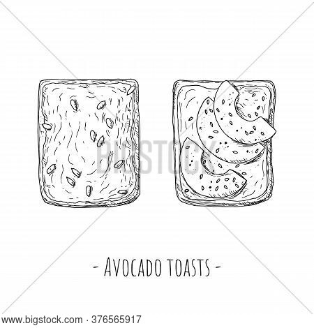 Avocado Toasts. Top View. Hand-drawn Style. Isolated.