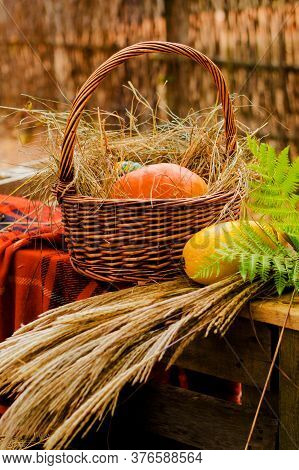 Autumn Harvest And Hay. Ripe Pumpkins In A Wicker Basket.