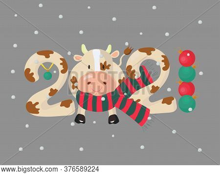 Decorated Figures 2021 With A Bull Wearing A Scarf, Baubles And Falling Snow. Vector Illustration.
