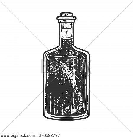 Scorpion Vodka Wine Sketch Engraving Vector Illustration. T-shirt Apparel Print Design. Scratch Boar