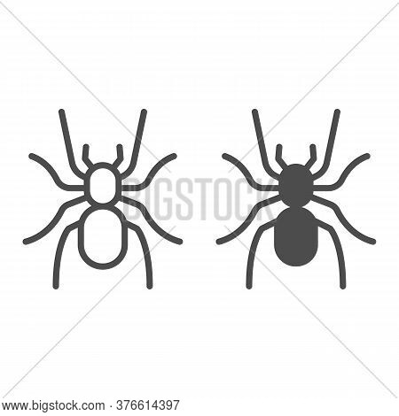 Tarantula Line And Solid Icon, Insects Concept, Scary Big Spider Sign On White Background, Dangerous