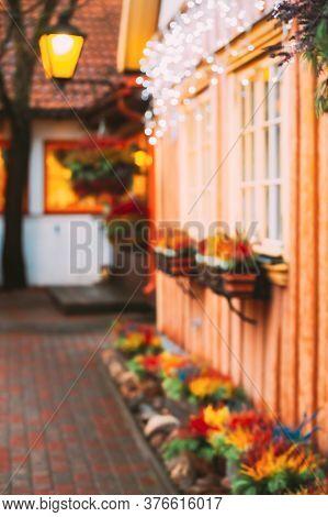 Abstract Blurred Bokeh Boke Background. Bush Of Colorful Calluna Plants In Hanging Pots Under Window
