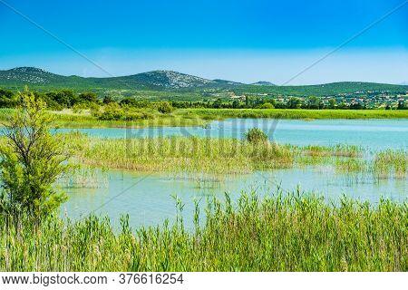 Beautiful Meadow And Green Lake In Ornithological Nature Park Vrana (vransko Jezero) In Dalmatia, Cr