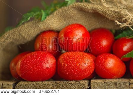 Fresh Long Plum Tomatoes In Burlap Bag. Tomatoes On Wooden Table
