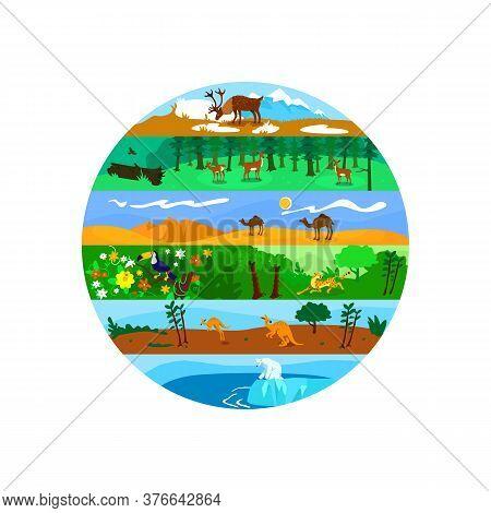 Biodiversity 2d Vector Web Banner, Poster. Worldwide Wildlife. Global Nature Variety Flat Scenery On