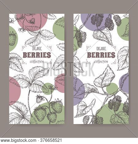 Two Labels With Garden Strawberry Aka Fragaria Ananassa And Black Mulberry Aka Morus Branch Sketch.