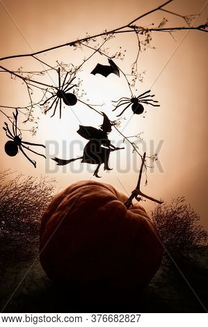 Witch Flies On The Sabbath. Creative Trendy Halloween Background With A Flying Witch Silhouette And