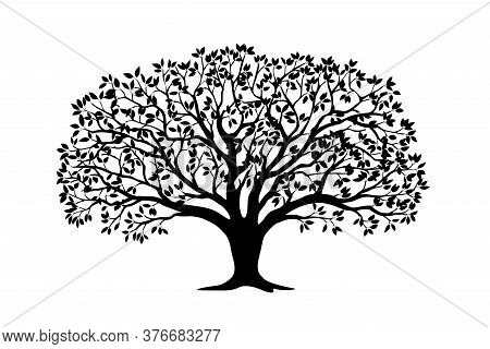 Black Silhouette Illustration Apple Tree With Leaves. Icon Tree Isolated On White Background. Templa
