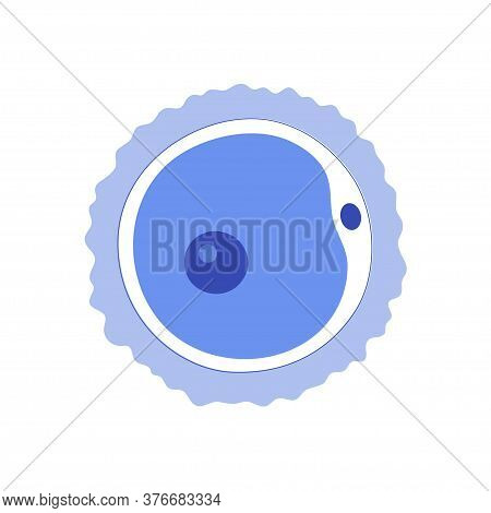 Woman Egg Cell Icon. Fertilisation, Gynecology And Ivf Research. Human Sexual Reproductive System Co