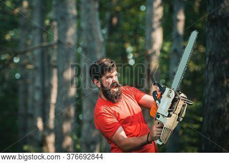 Stylish Young Man Posing Like Lumberjack. Firewood As A Renewable Energy Source. Lumberjack Worker S