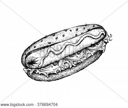 Illustration Hand Drawn Sketch Of Delicious Grilled Hot Dog With Mustard And Wheat Bun Isolated On W