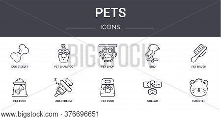 Pets Concept Line Icons Set. Contains Icons Usable For Web, Logo, Ui Ux Such As Pet Shampoo, Bird, P