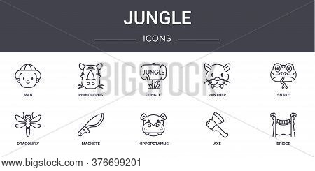 Jungle Concept Line Icons Set. Contains Icons Usable For Web, Logo, Ui Ux Such As Rhinoceros, Panthe