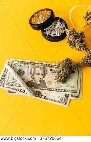 Sativa Thc Cbd. Money Weed. Marijuana Weed Bud And Grinder. Indica Medical Health.