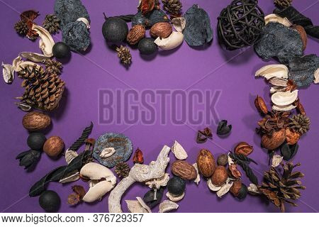 Elegant Dried Botanical Mixture On A Purple Background Creating A Frame Shape With Copy Space