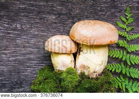 White Mushrooms (boletus Edulis) On A Old Wooden Table